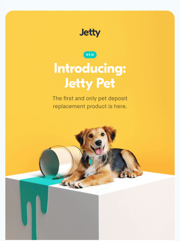 Introducing: jetty pet email by Jetty 6